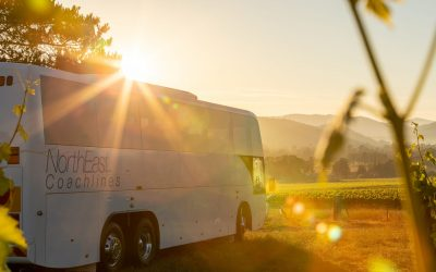 Custom transfers in the high country - North East Coachlines